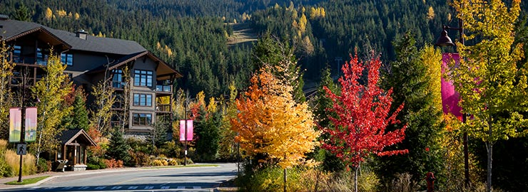 Whistler Creekside Autumn
