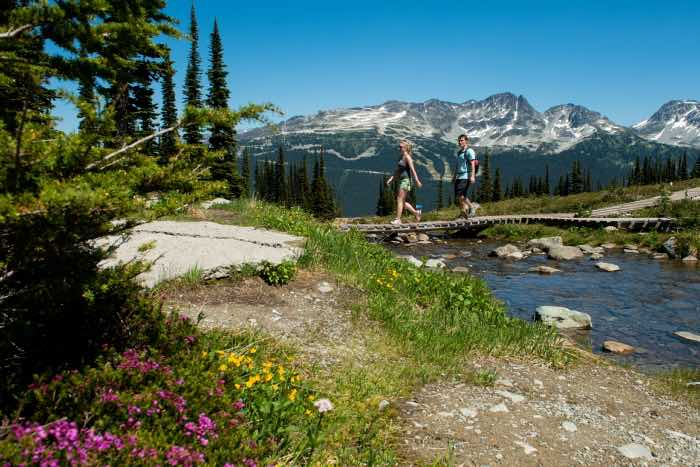 whistler blackcomb mountain hiking trails